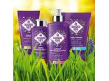 4SEASONS CARE серия для защиты сухой и чувствительной кожи с сосудистой сеточкой